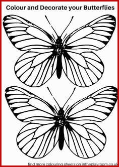 236x333 monarch butterfly drawing and nice e flying monarch