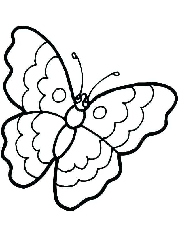 618x823 monarch butterfly life cycle coloring sheet beautiful monarch