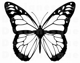 340x270 Monarch Etsy