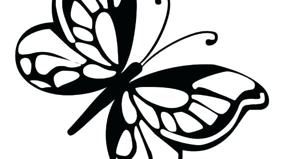 570x320 Monarch Butterfly Coloring Pages Free