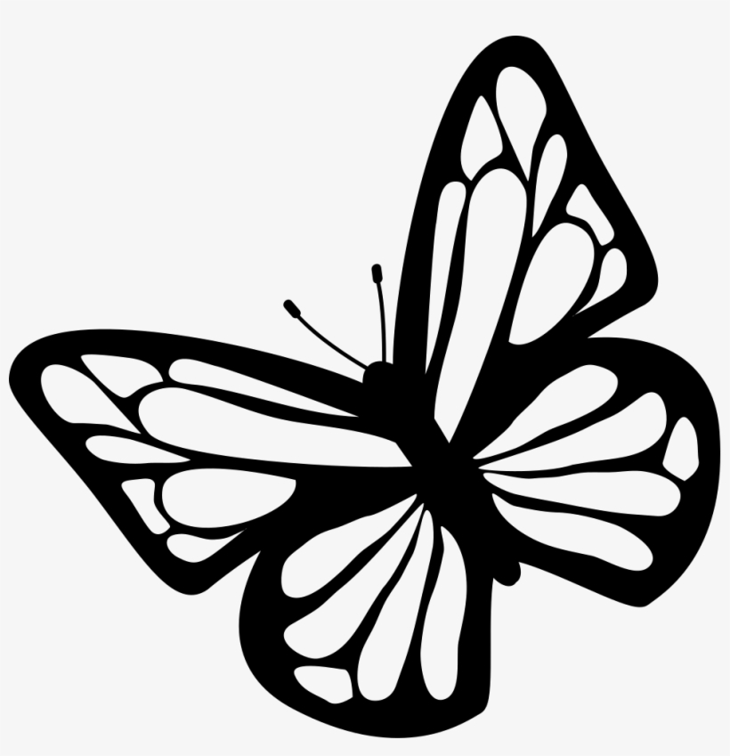 820x849 Good Monarch Butterfly Drawing Black And White At Getdrawings