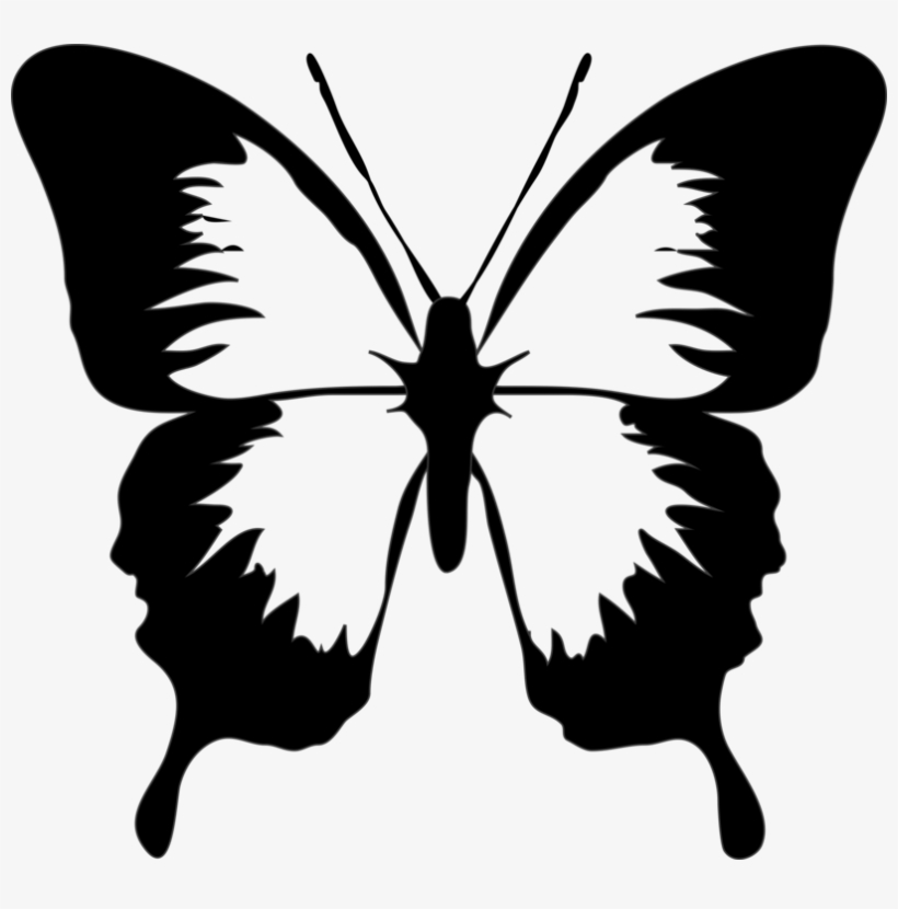 820x830 Monarch Butterfly Drawing Download Computer Icons
