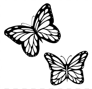 310x301 Monarch Butterfly Outline Drawing Butterflies Black And White