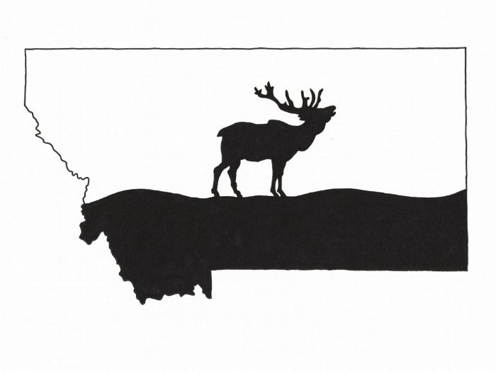 700x524 Montana Elk Silhouette Drawing Signed Print Kodiak Art Llc