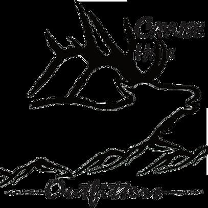 407x407 Cayuse Hills Outfitt Elk