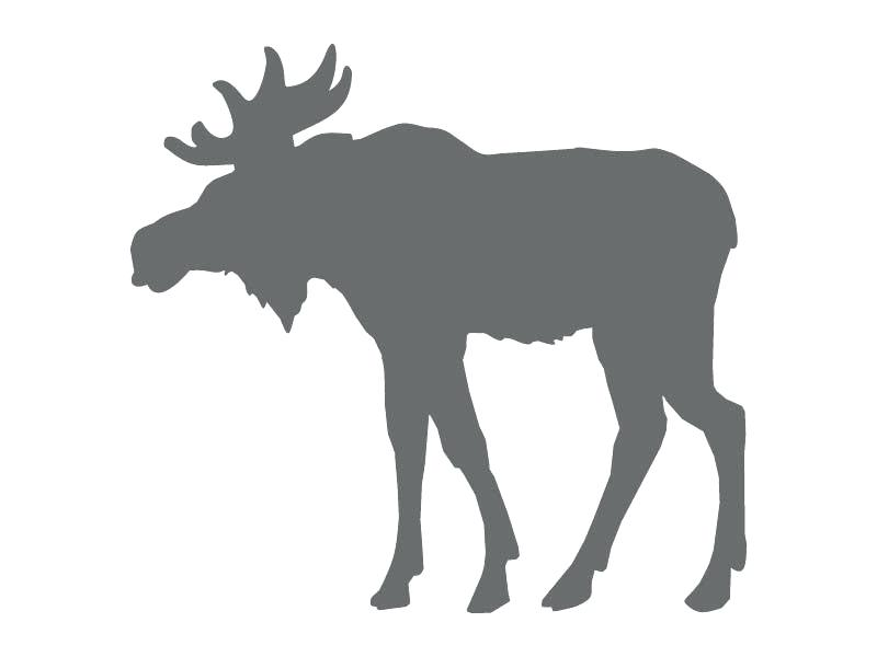 800x600 moose head outline moose head outline moose head silhouette free