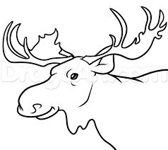 Moose Drawing Step By Step