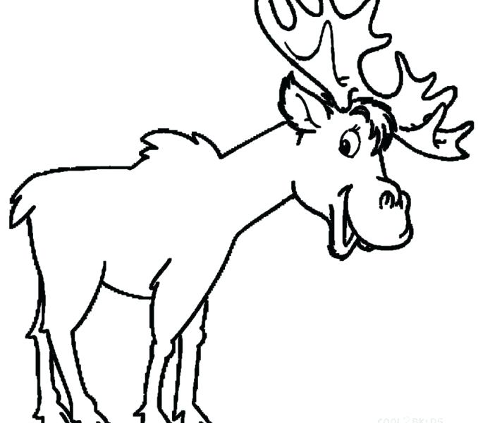 678x600 moose coloring pages moose coloring pages moose coloring pages