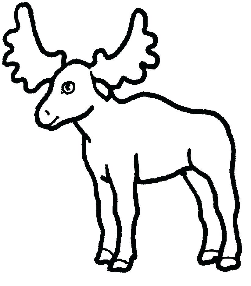 823x939 moose pictures to color moose coloring sheets baby moose coloring