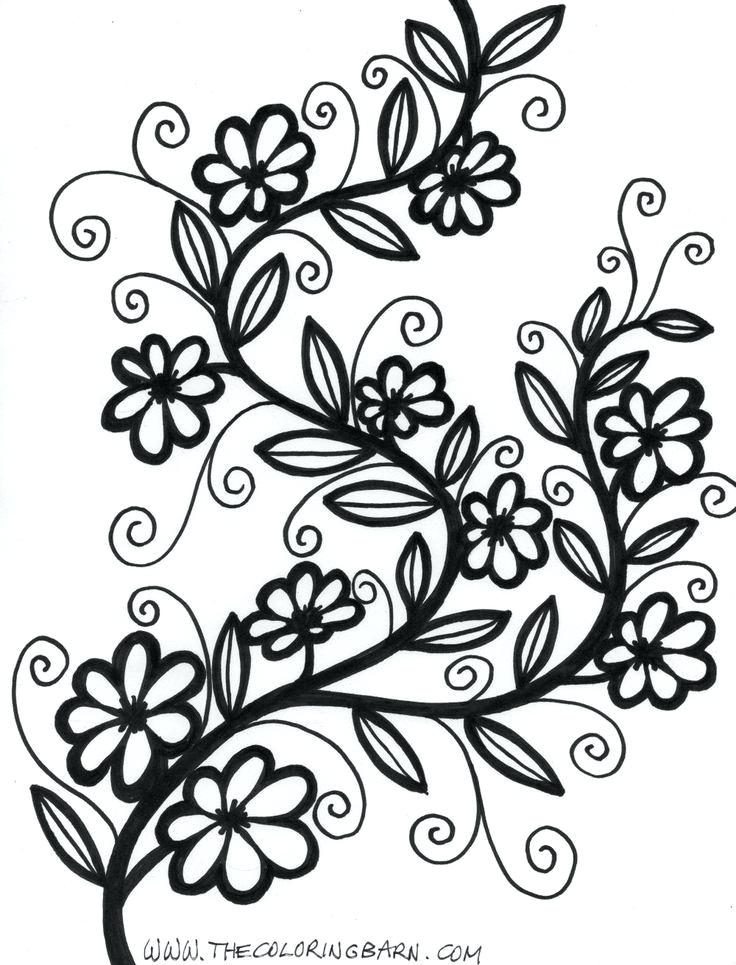 736x965 vines drawing flowers and vines drawing at com free for personal