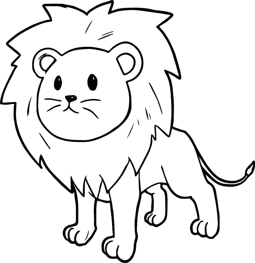 863x888 lion coloring picture mountain lion coloring pages pictures