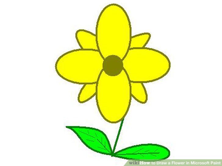 728x546 How To Draw A Flower In Microsoft Paint
