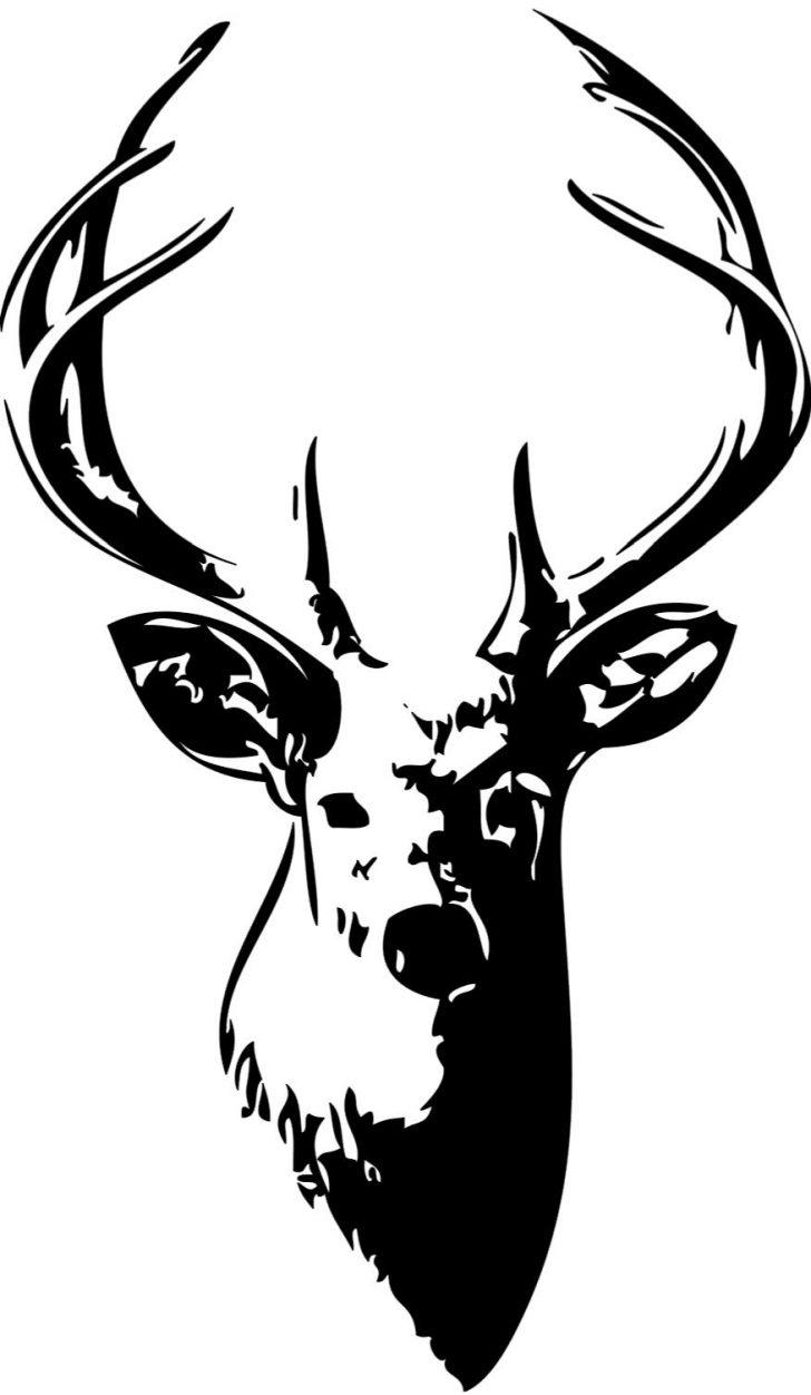 728x1252 Deer Head Drawing Easy Cute A Cool Mule Skull I Fertility