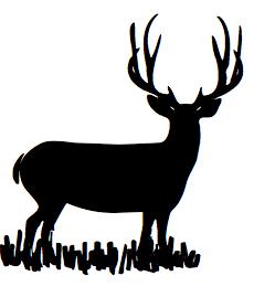 249x269 Mule Deer Drawing For Wilderness Doodles