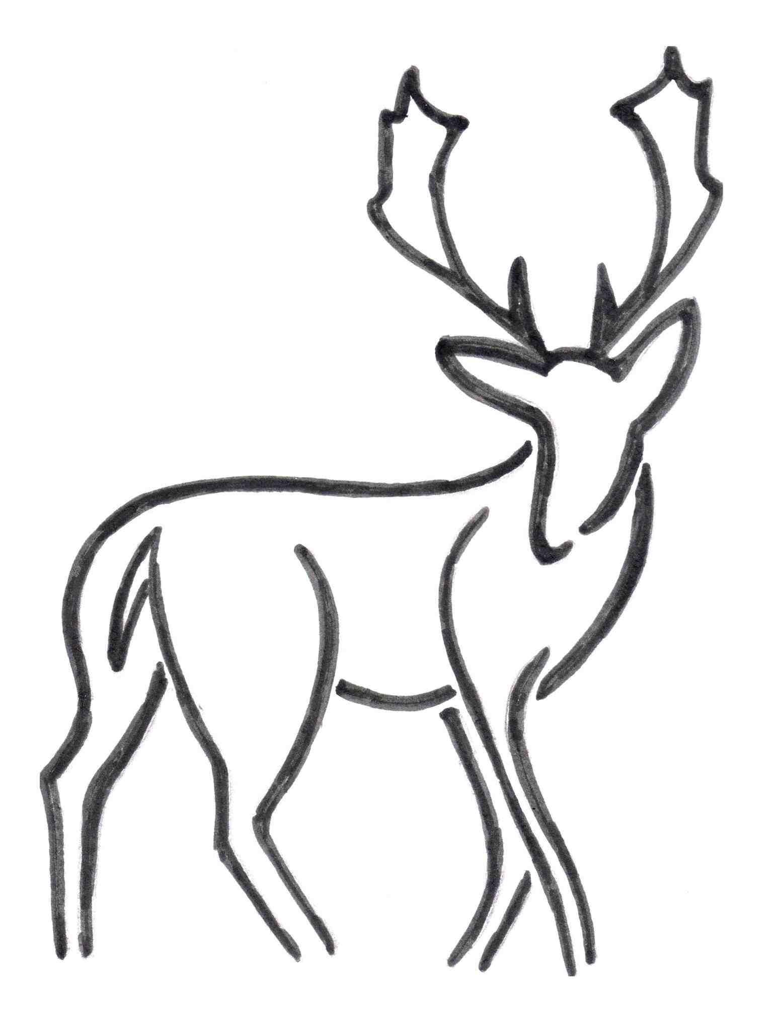1548x2054 Simple Deer Drawing