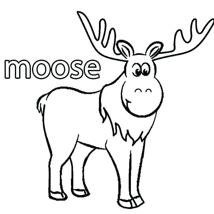 850x850 Deer Coloring Pages Mule Deer Coloring Pages Tree Christmas Deer