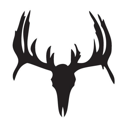 500x500 Deer Skull Drawing