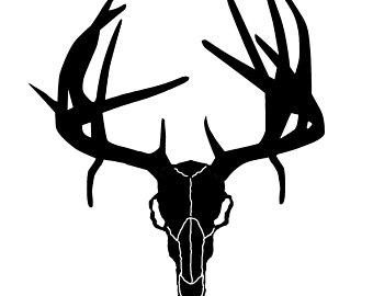 340x270 Deer Skull Drawing Etsy