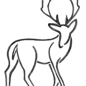 336x336 Deer Head Drawing Easy Cute A Cool Mule Skull I Fertility