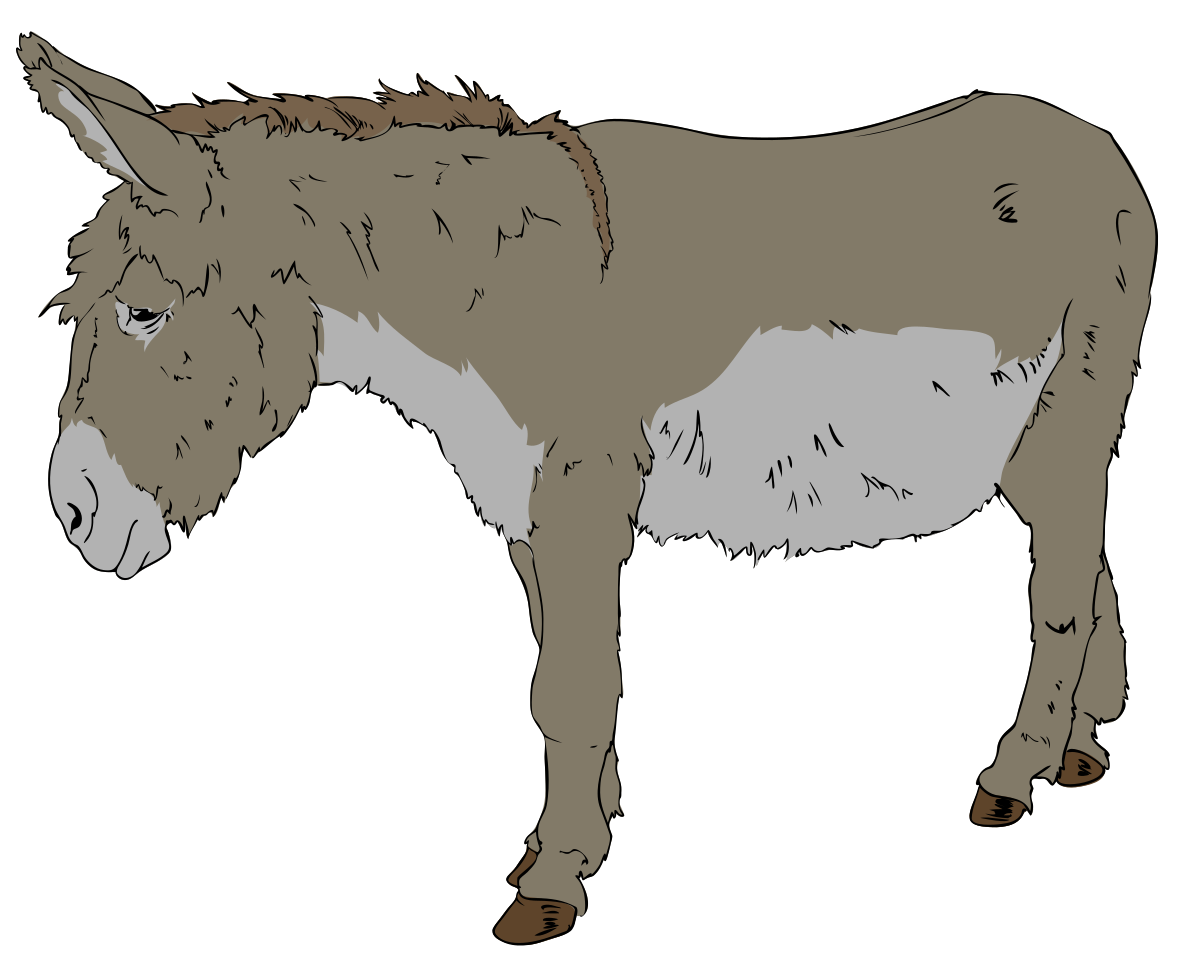 1200x963 Drawing Donkey Farm Animal Transparent Png Clipart Free Download