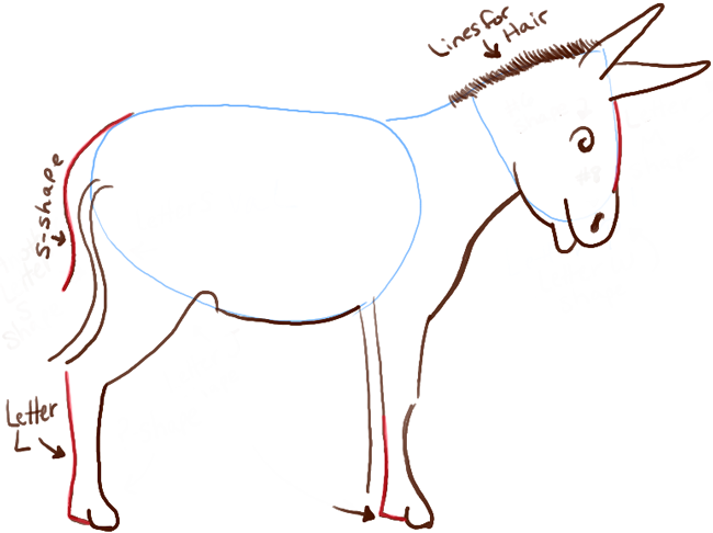 650x486 How To Draw Cartoon Donkeys Mules With Simple Steps Lesson How