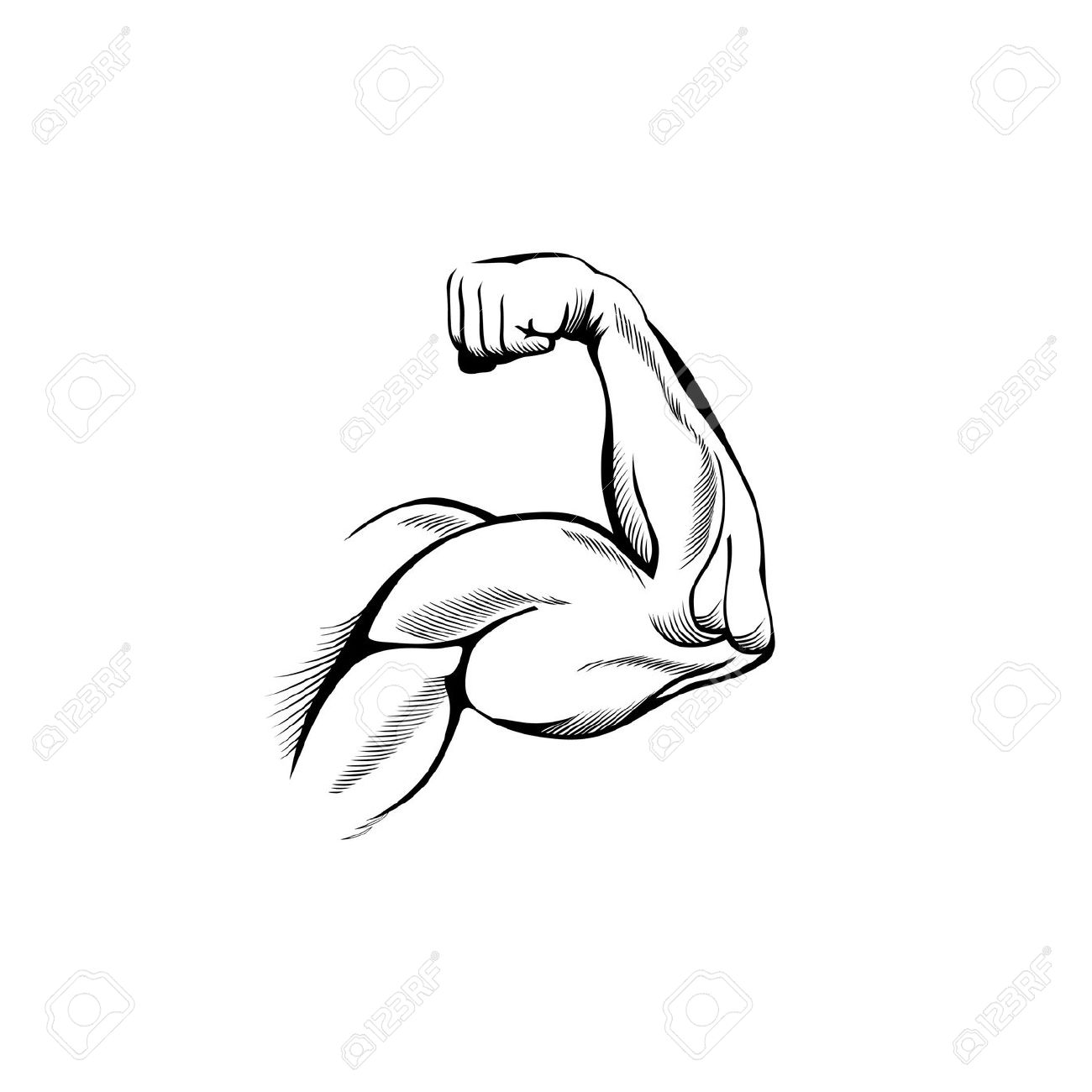 Muscle Arm Drawing