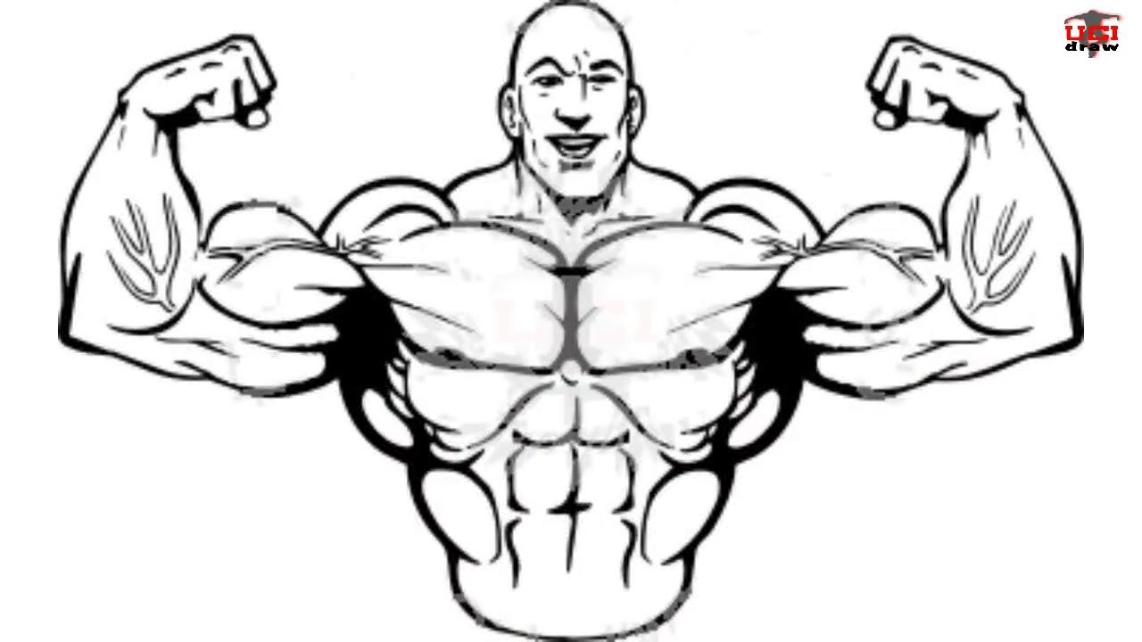 1280x720 How To Draw Muscles Step