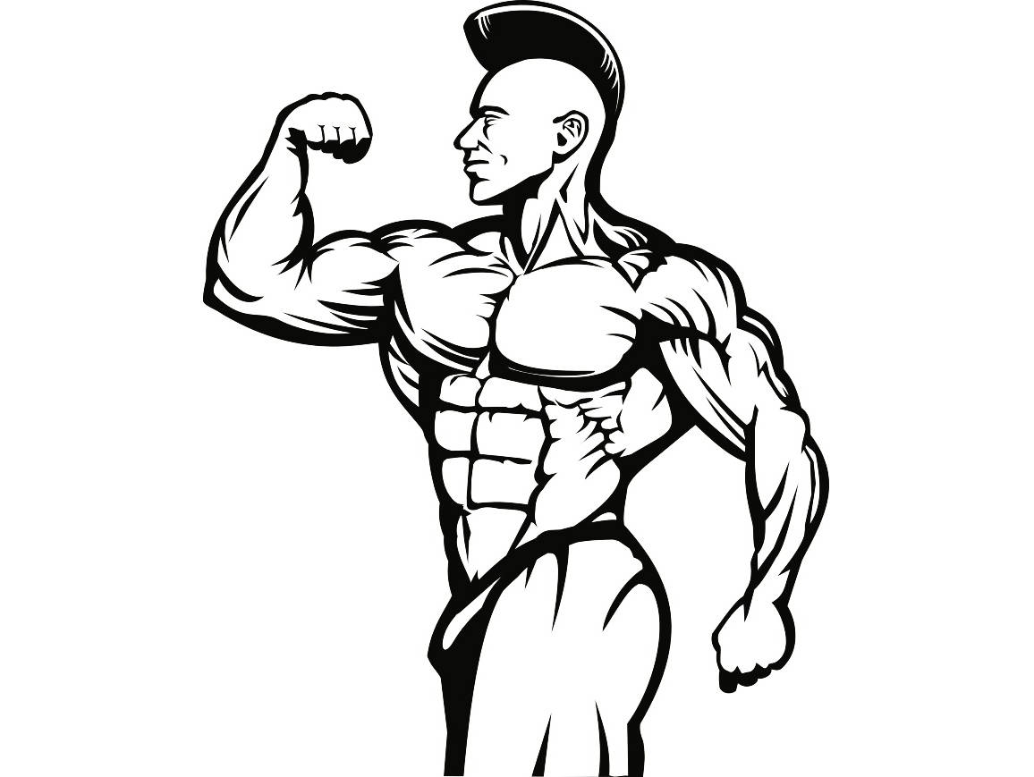1156x869 Huge Collection Of 'bodybuilder Drawing' Download More Than