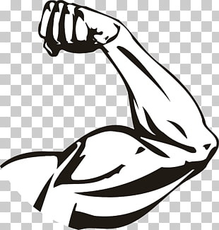 310x325 Muscle Drawing Arm, A Strong Upper Arm, Illustration