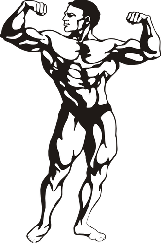 331x500 Muscle Clipart Muscled Arm For Free Download And Use