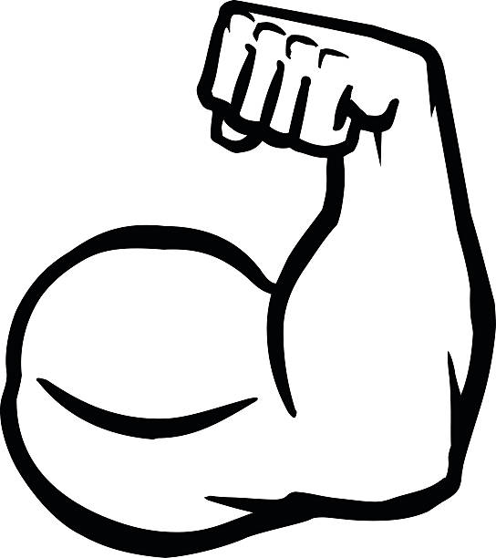544x612 collection of free muscle clipart muscle arm amusement clipart