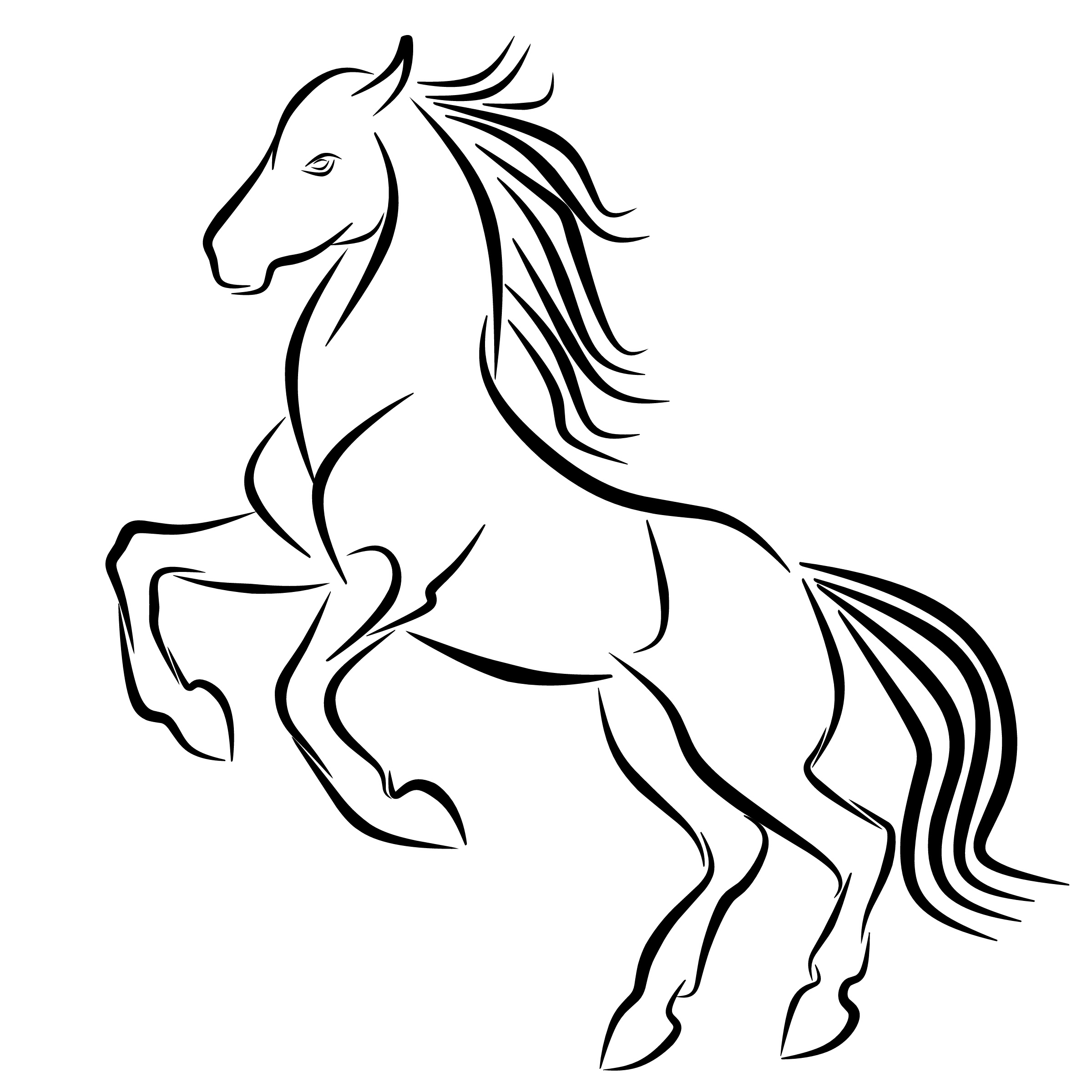 Mustang Horse Drawing Free Download Best Mustang Horse Drawing On