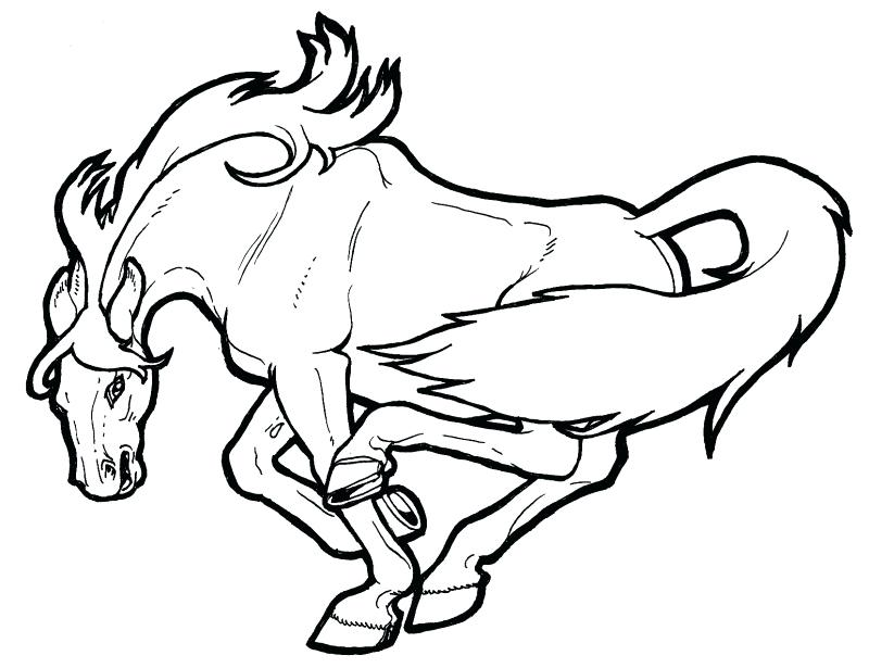 800x615 marvellous mustang horse coloring pages amazing mustang horse