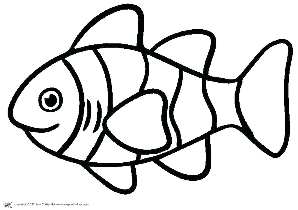 1024x724 fish outline drawing tutorials draw cartoon fish tropical fish
