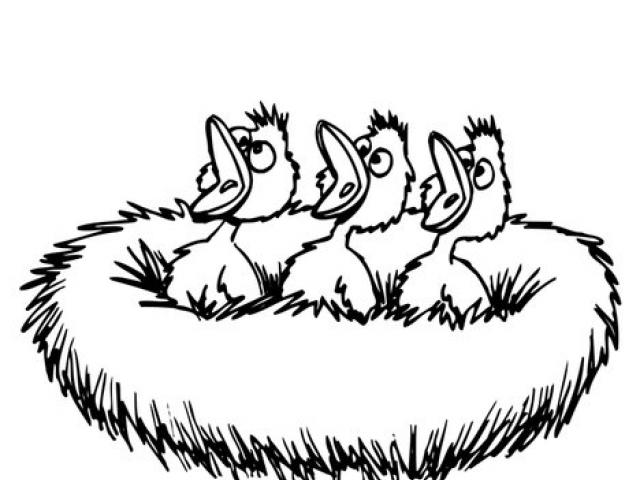 640x480 Birds Nest Clipart Free Clip Art Stock Illustrations