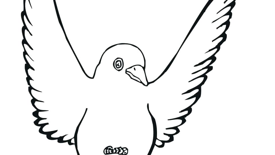 960x544 Printable Bird Pictures Free Printable Bird Coloring Pages