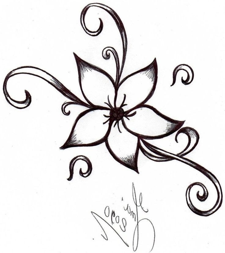 736x830 Easy Flower Drawing Ideas New Image Result For Easy Drawings