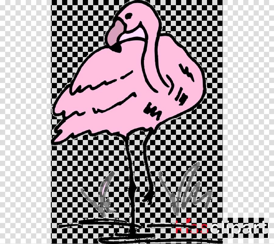 900x800 Drawing, Flamingo, Cartoon, Transparent Png Image Clipart Free