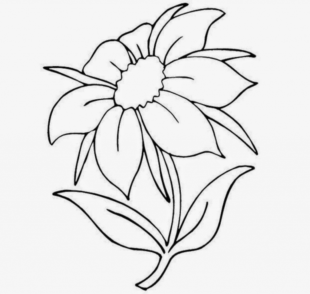 1024x971 nice flower drawings nice flowers in drawing easy flower drawings