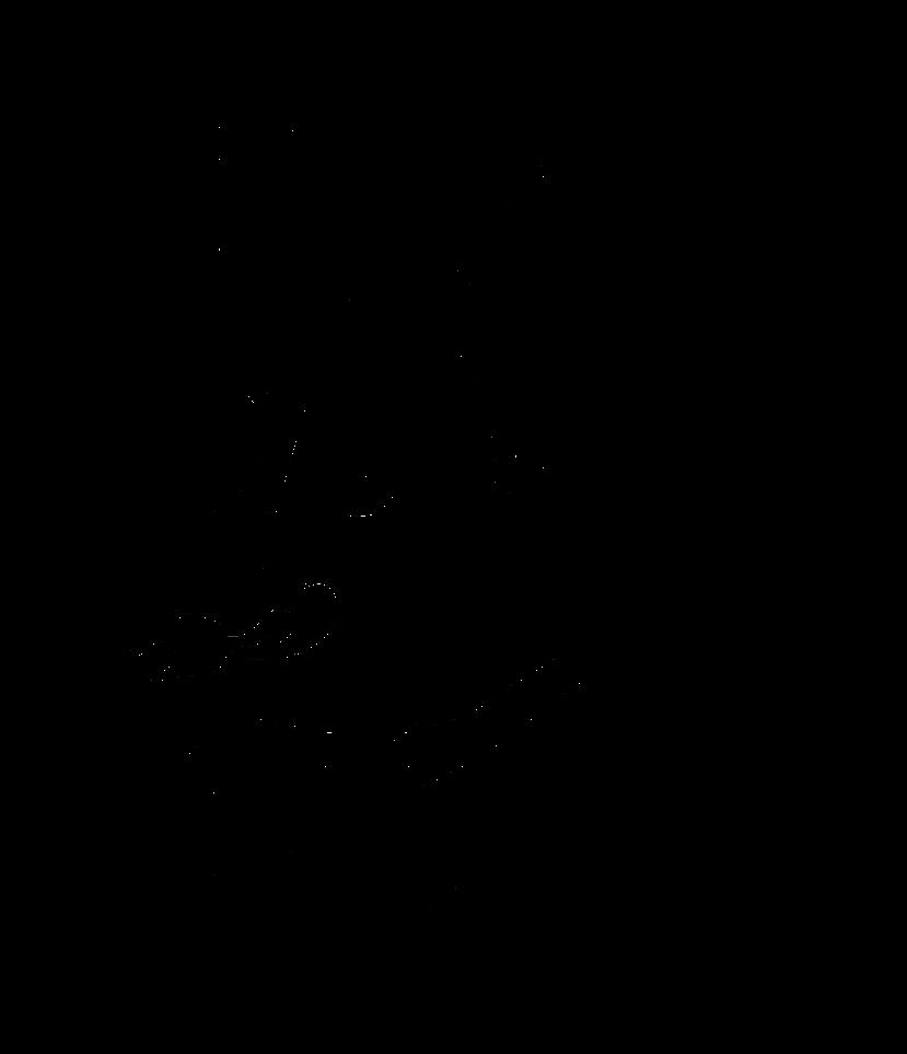 829x963 Nightcrawlers