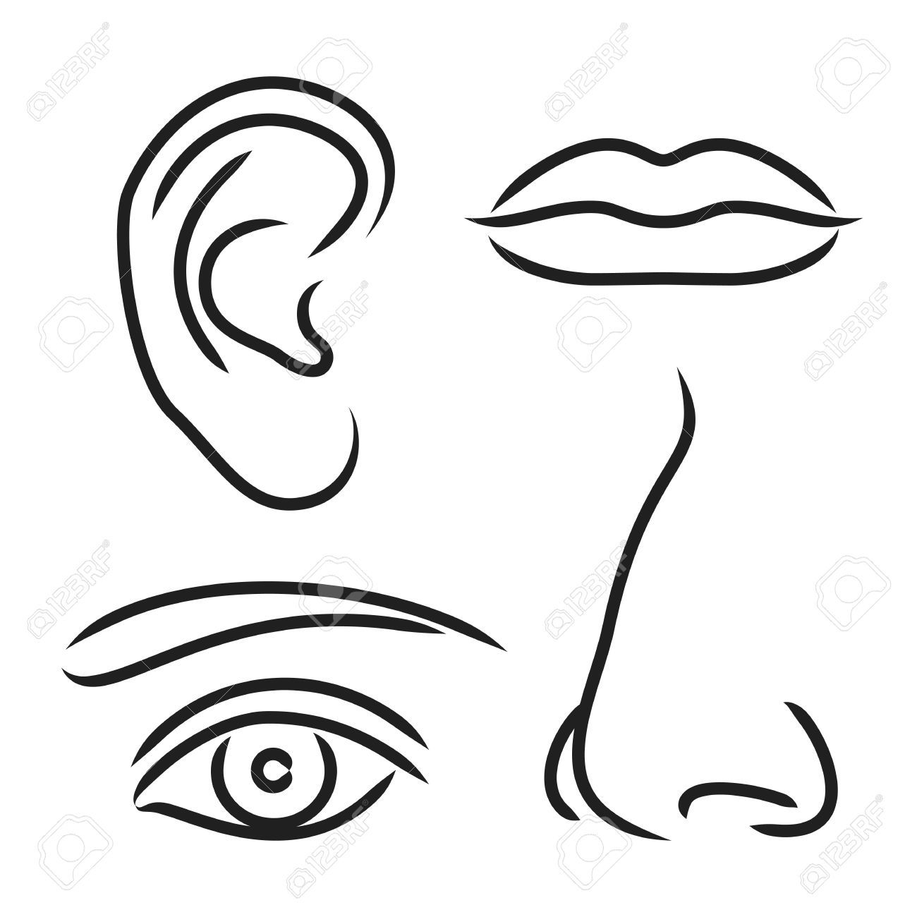 1300x1300 awesome printable noses mouth eyes images my senses mouth