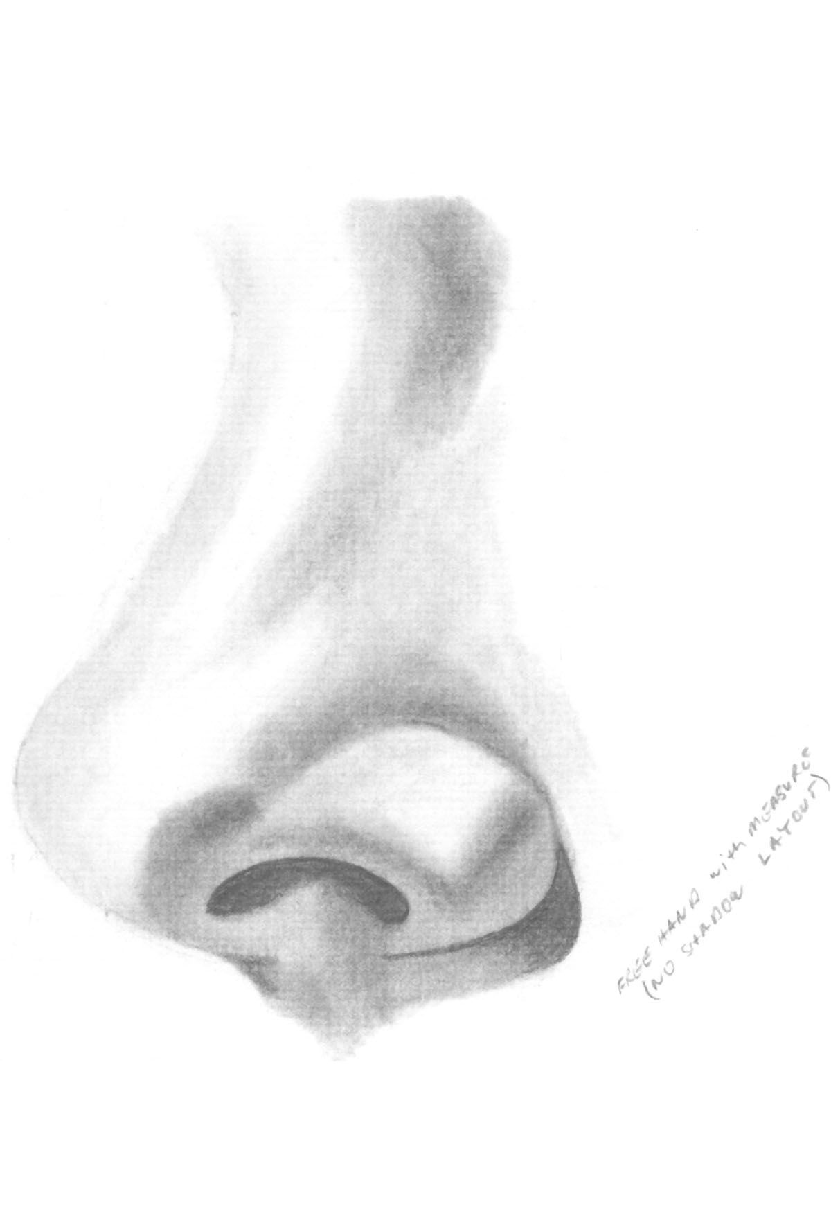 1200x1758 How To Draw Noses How To Learn To Draw And Paint Portraits Harry