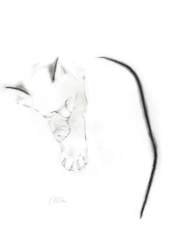 1058x1500 Sleepy Cat Watercolor Pencil Drawings, Sleepy Cat, Cats