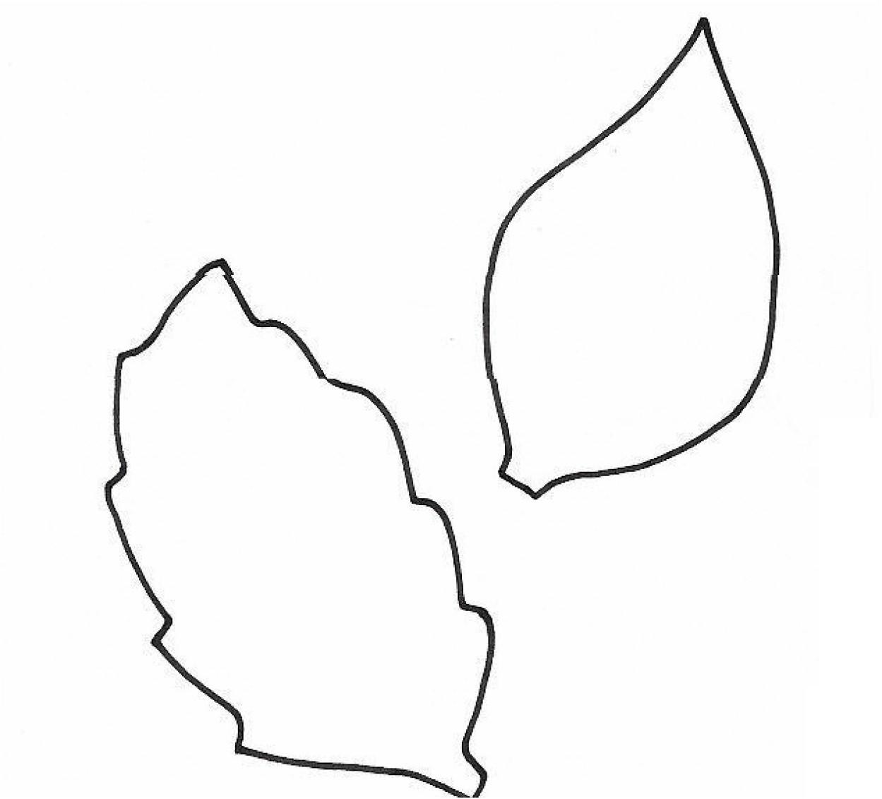 Oak Leaf Drawing Template