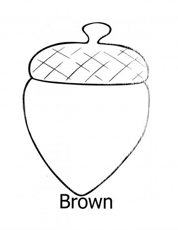 image about Acorn Template Printable referred to as Oak Leaf Drawing Template No cost obtain easiest Oak Leaf