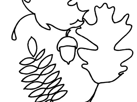 440x330 Oak Leaf Coloring Page, Line Drawings Of Leaves Clipart Best