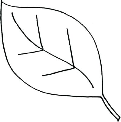 400x402 leaf outlines oak leaf outline vector images maple leaf outline