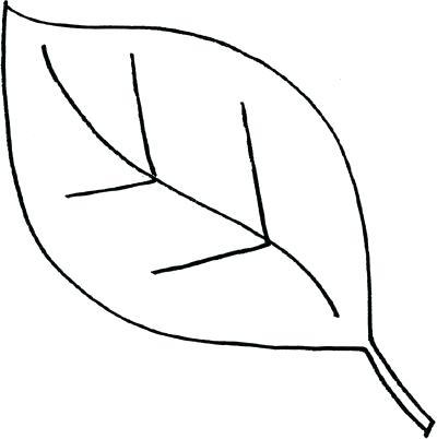 400x402 leaf outlines oak leaf outline vector images maple leaf outline