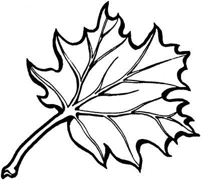 401x360 oak leaf outline black oak leaf tattoos