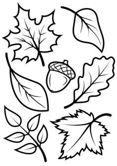 236x334 Oak Leaf Outline Group With Items
